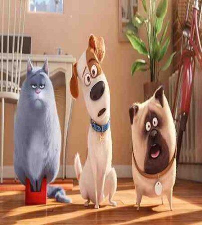 تصاویر فیلم 2010 Cats & Dogs