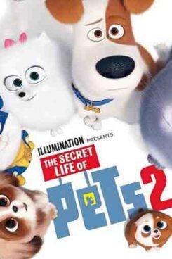 دانلود انیمیشن زندگی مخفی حیوانات خانگی The Secret Life of pest 2019 2
