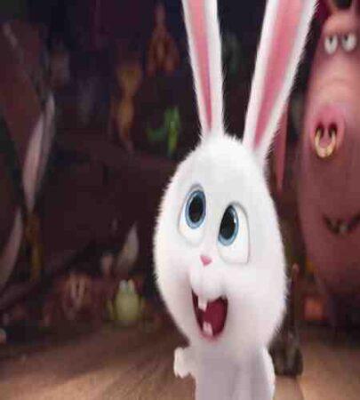 نقد وبررسی انیمیشن The Secret Life of pest 2019 2